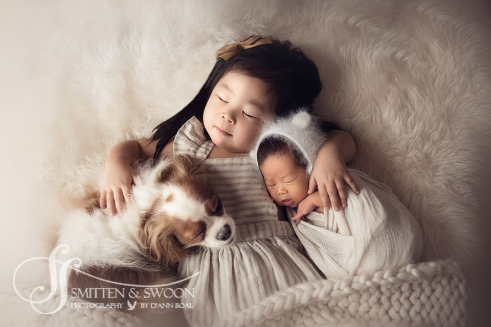 newborn sister and king charles cavalier sleeping with newborn baby brother - boulder photographer